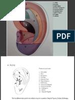 pontos auriculares estetica