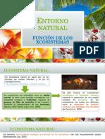 Entorno Natural EXPOCICION