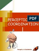 Perception Nursing Process