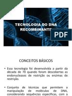 AULA 2 - DNA Recombinante