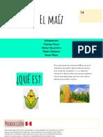 El maíz