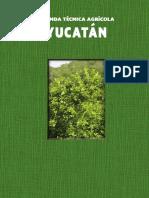 31 Yucatan 2015 SIN