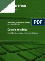 EA Selma CalculoNumerico
