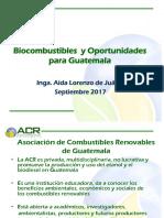 Ponencia No. 1 - Biocombustibles y Oportunidades Para Guatemala