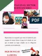 II Sesion de Microfinanzas- Garantias