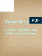 deforestaion edited final p 2