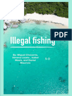 illegal fishing final 2