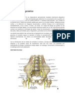 Síntomas y Diagnóstico.docx