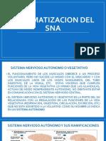 Sistematización Del SNA