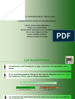 Ecosistema Final