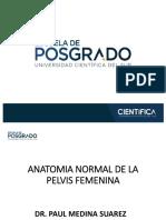 1. Anatomia Normal de La Pelvis Femenina