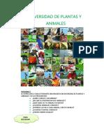 Diversidad de Plantas y Animales