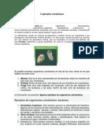 5 ejemplos unicelulares.docx