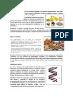 LÍPIDOS tarea.docx