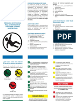 TRIPTICO-CAIDAS.pdf