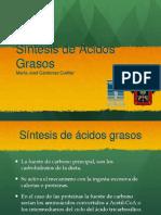 Síntesis de Ac. Grasos María José Cárdenas Cuéllar.ppt