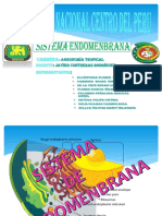 Sistema de Endomenbrana_ Angelito
