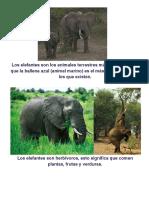 El elefante.doc
