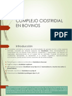 Clinica Bovinos Clostridium