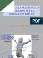 Alteraciones Diferenciación y Multiplicación Celular. 2017
