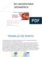 TRABAJO DE PARTO Y DISTOCIAS