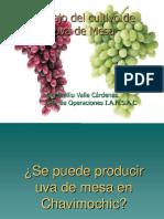 MANEJO DE VID.pptx