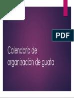 Calendario de Guata