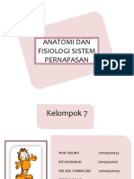 anatomidanfisiologisistempernapasan-140702113832-phpapp01