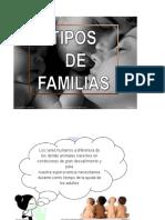 Tipos de Familias PDF