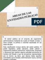 AREAS DE LAS ENTIDADES PÚBLICAS