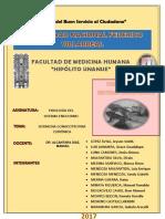 FISIOLOGÍA - FINAL.docx