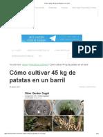 Cómo Cultivar 45 Kg de Patatas en Un Barril