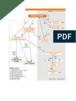 Biotransformasi Pct
