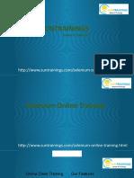 Selenium course description