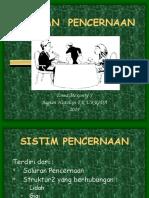 Kuliah Pencernaan Histo 2014