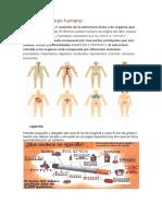 Diccionario Cientifico 5TO a COMPLETO