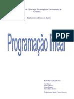 Programacao Linear Fundamentos e Ensino de Álgebra