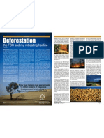 Deforestation & the Forest Stewardship Council