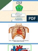 Radiologi CHF
