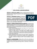 Pliego de Bases y Condiciones.docx