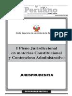 I Pleno Consti y Contenc Adminis