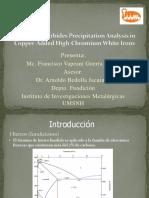 Presentación Fundiexpo 2014 FVGL