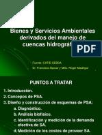 Capitulo 2 Bienes y Servicios Ambientales Perú