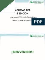 Normas Apa  PDF
