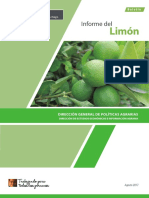 Informe Limon Ago17