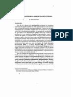 PrivatizacionAP.pdf