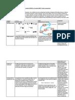 Producto Academico 1-Desarrollo de productos.docx