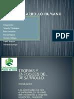 Desarrollo Humano Vanessa Campo