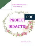 Proiect Flori de Primavara