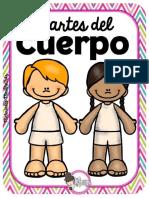 PartesDelCuerpoMEEP.pdf